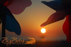Blue-and-Purple-color-Sunrise-on-Florida-Beach-Big-Bites-Photography.jpg