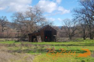 Napa-California-Old-Barn-and-field-Big-Bites-Photography.jpg