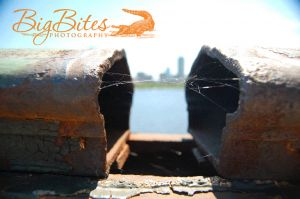 Broken-Boston-Bridge-with-City-in-Background-Color-Big-Bits-Photography.jpg