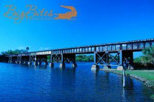 More-Love-Graffiti-Bridge-in-Florida.jpg