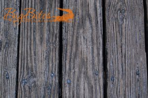 Wood-planks-Big-Bites-Photography.jpg