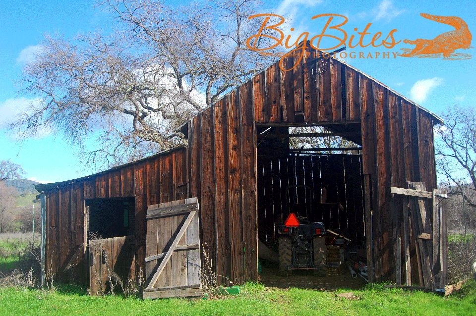 Napa-California-Old-Barn-and-Tractor-Big-Bites-Photography.jpg