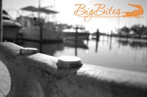 Boats-in-Back-b-and-w-Florida-Big-Bites-Photography.jpg