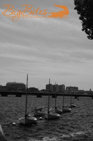 Boston-Boats-All-in-Line-b-.jpg