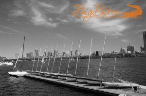 Boston-Boats-b-and-w.jpg