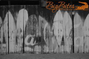 Coca-Cola-b-and-w-Florida-Beach-Big-Bites-Photography.jpg