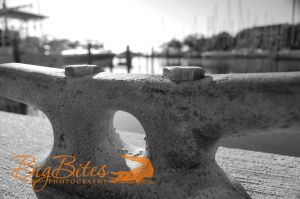 Concrete-and-Boats-b-and-w-Florida-Big-Bites-Photography.jpg