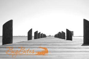 Dock-9-b-and-w-Florida-Big-Bites-Photography.jpg