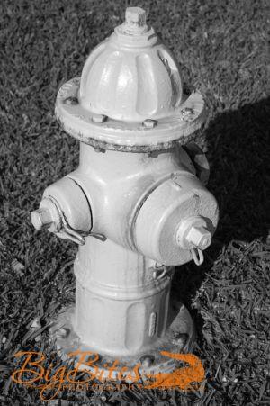 Fire-Hydrant-b-and-w.jpg