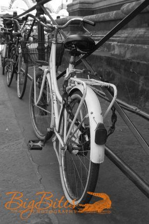 Florence-Bike-3-Italy-Big-Bites-Photography.jpg