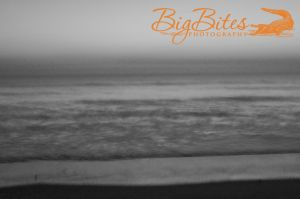 Hazey-Horizontal-b-and-w-Florida-Beach-Big-Bites-Photography.jpg