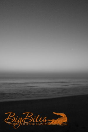 Hazey-Vertical-b-and-w-Florida-Beach-Big-Bites-Photography.jpg