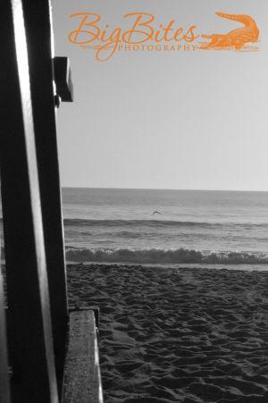 Lifeguard-Stand-b-and-w-Florida-Beach-Big-Bites-Photography.jpg