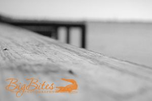 Long-Dock-b-and-w-Florida-Big-Bites-Photography.jpg