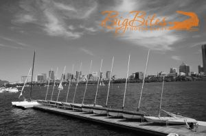 More-boats-in-a-row-bw.jpg