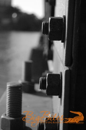 Nuts-and-Bolts-Bridge-b-and.jpg