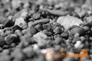 Rocks-b-and-w-Big-Bites-Photography.jpg