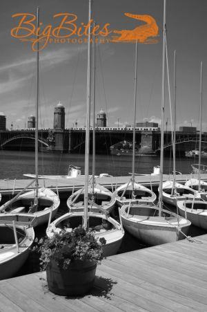 Sailboat-School-b-and-w-Boston-Big-Bites-Photography.jpg