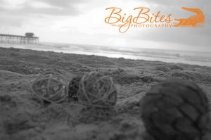 Spheres-and-Pier-b-and-w-Florida-Beach-Big-Bites-Photography.jpg