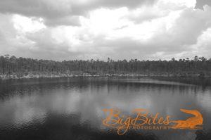 blue-hole-b-and-w-Bahamas-Big-Bites-Photography.jpg
