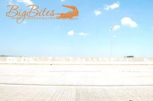 Bridge-and-Car-Big-Bites-Photography.jpg