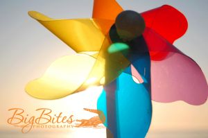 Another-SunCatcher-color-Big-Bites-Photography.jpg