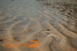 Bahamian-Sand-color.jpg