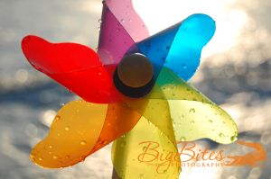 Wet-Pinwheel-Florida-Beach-Big-Bites-Photography.jpg