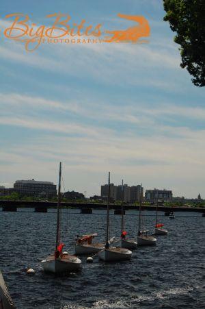 Boston-Boats-All-in-Line-Co.jpg