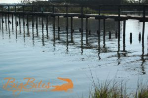 Dock-Reflection.jpg