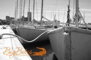 Ground-Level-Boston-Boats-Big-Bites-Photography.jpg