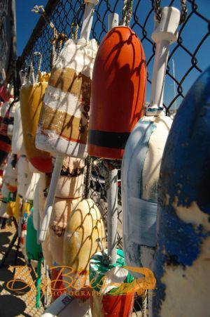 hang-up-Boston-Boat-buoys-Big-Bites-Photography.jpg