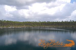 blue-hole-color-Bahamas-Big-Bites-Photography.jpg